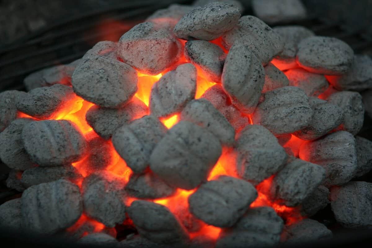 Houtskool of briketten op de bbq